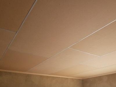 rhino board ceiling types